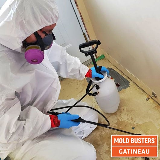 Cleaning and desinfection - Gatineau