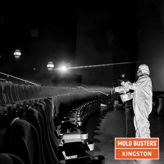 Mold remediation in movie theater - Kingston