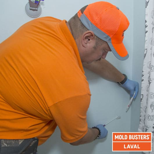 Mold testing - Laval