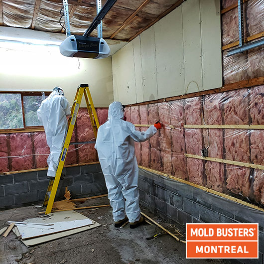 Garage mold removal - Montreal