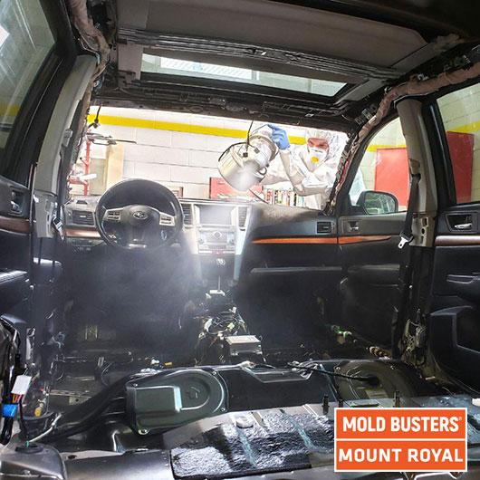 Car remediation - fogging - Mount Royal