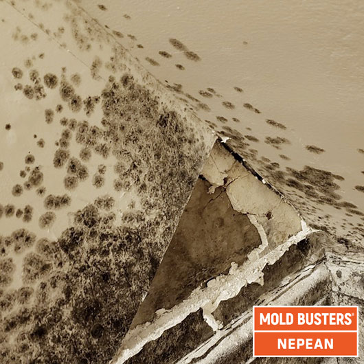 Asbestos drywall - bulk testing - Nepean