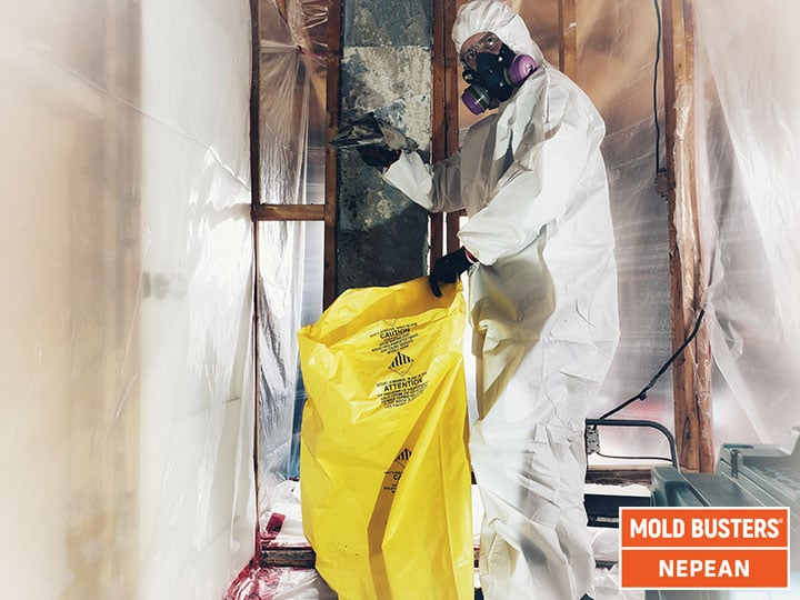 Mold removal Nepean