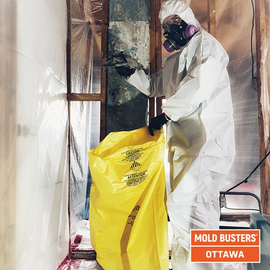 Asbestos & mold disposal - Ottawa