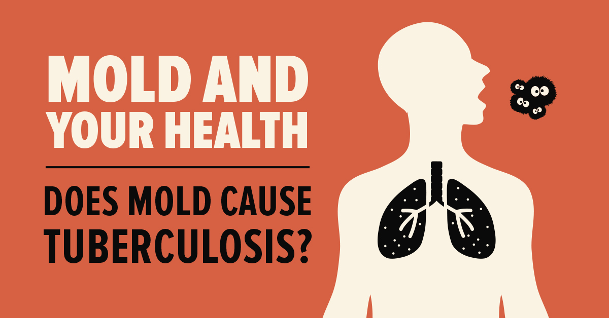 mold and your health