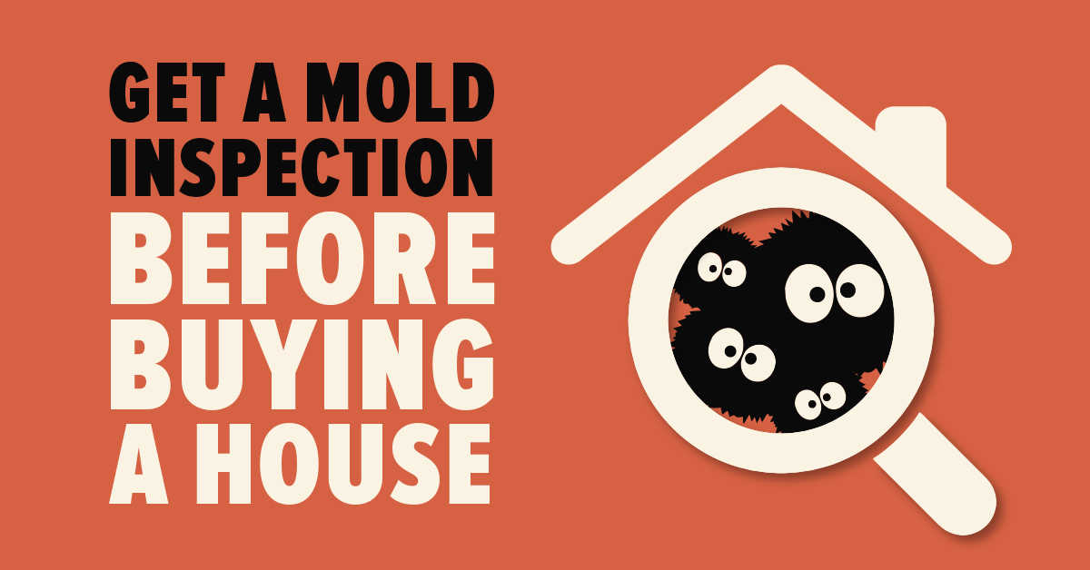 Get a Mold Inspection Before Buying a House