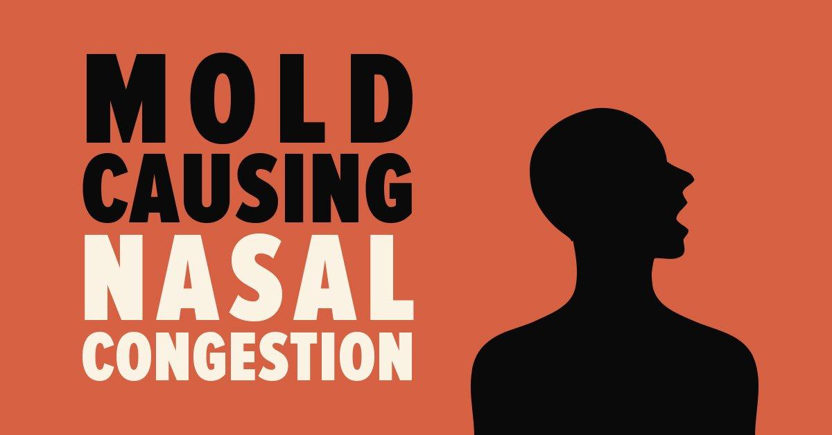 mold causing nasal congestion