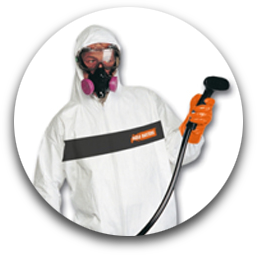 About Us - Mold Removal Service in Ottawa and Montreal
