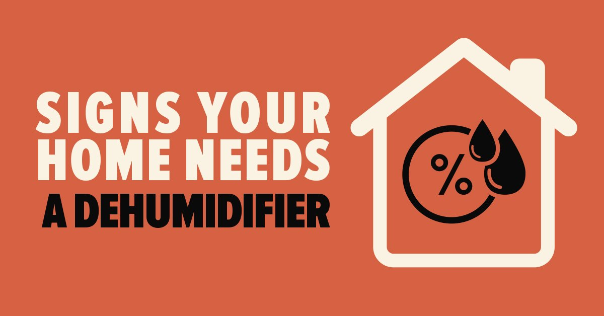 Signs Your Home Needs a Dehumidifier