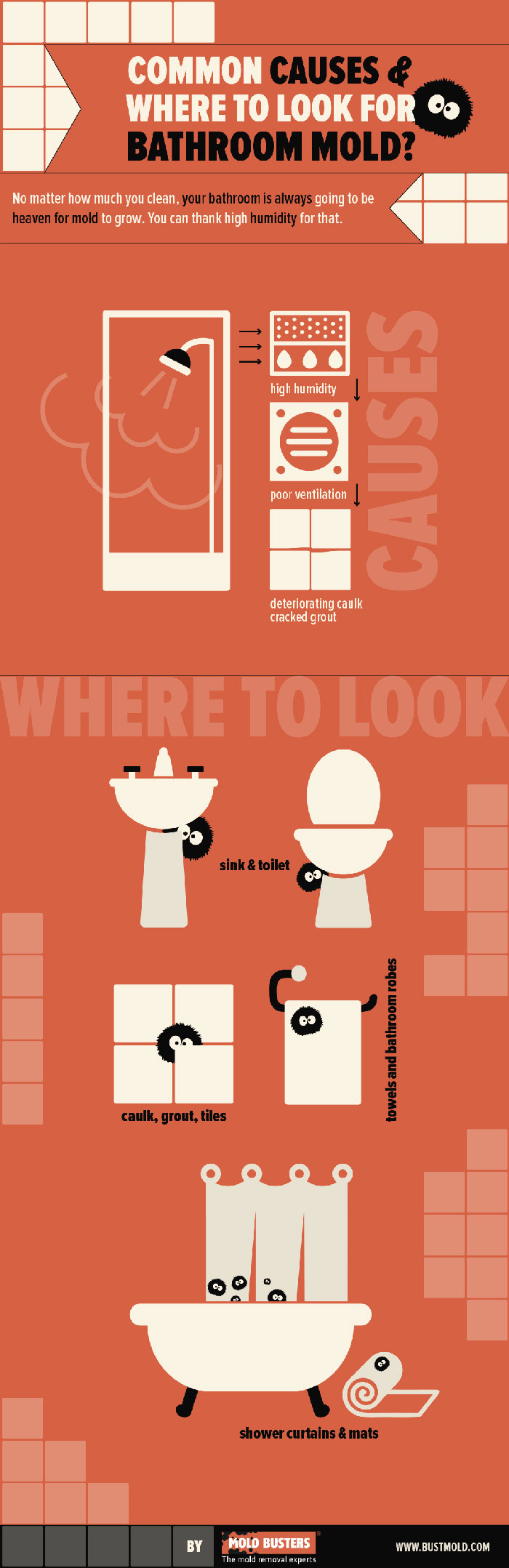 infographic-where mold grows in bathroom