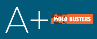 BBB gives Mold Busters A+ Rating