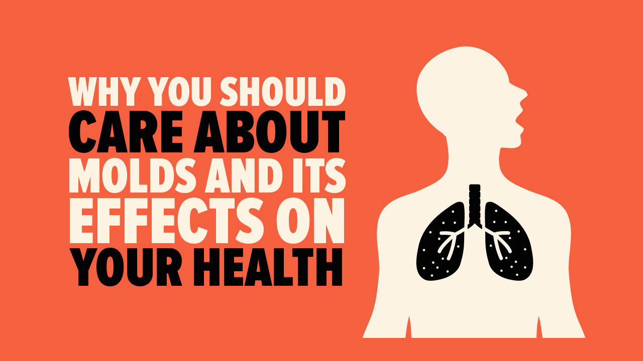 mold effects on health