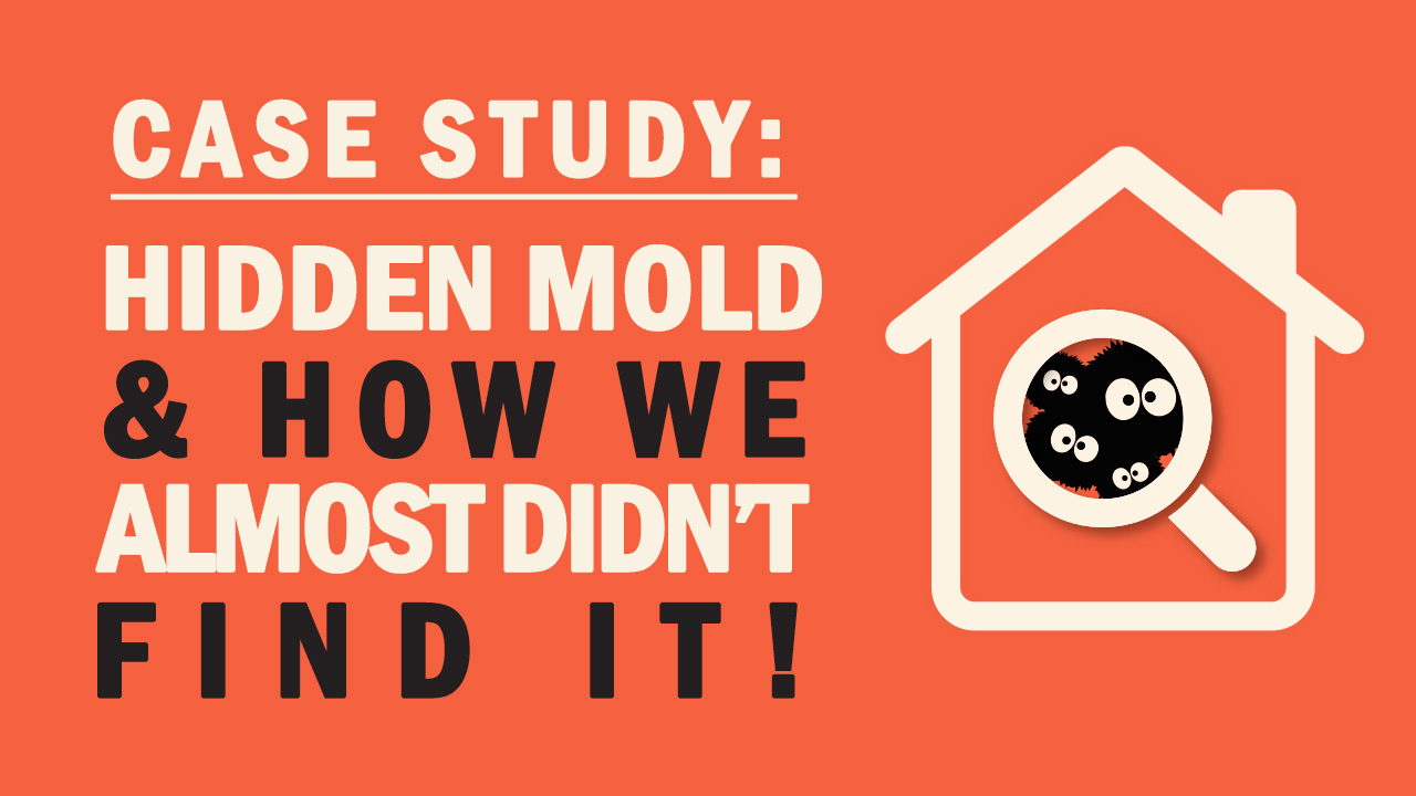 Hidden Mold – How We Almost Didn't Find It