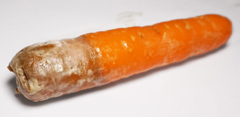 yellow flag mold food carrot