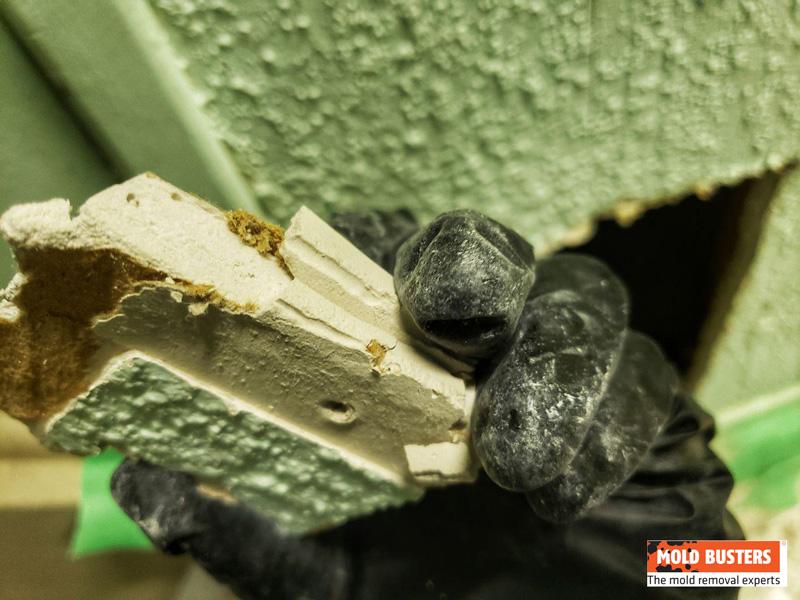 asbestos in drywall