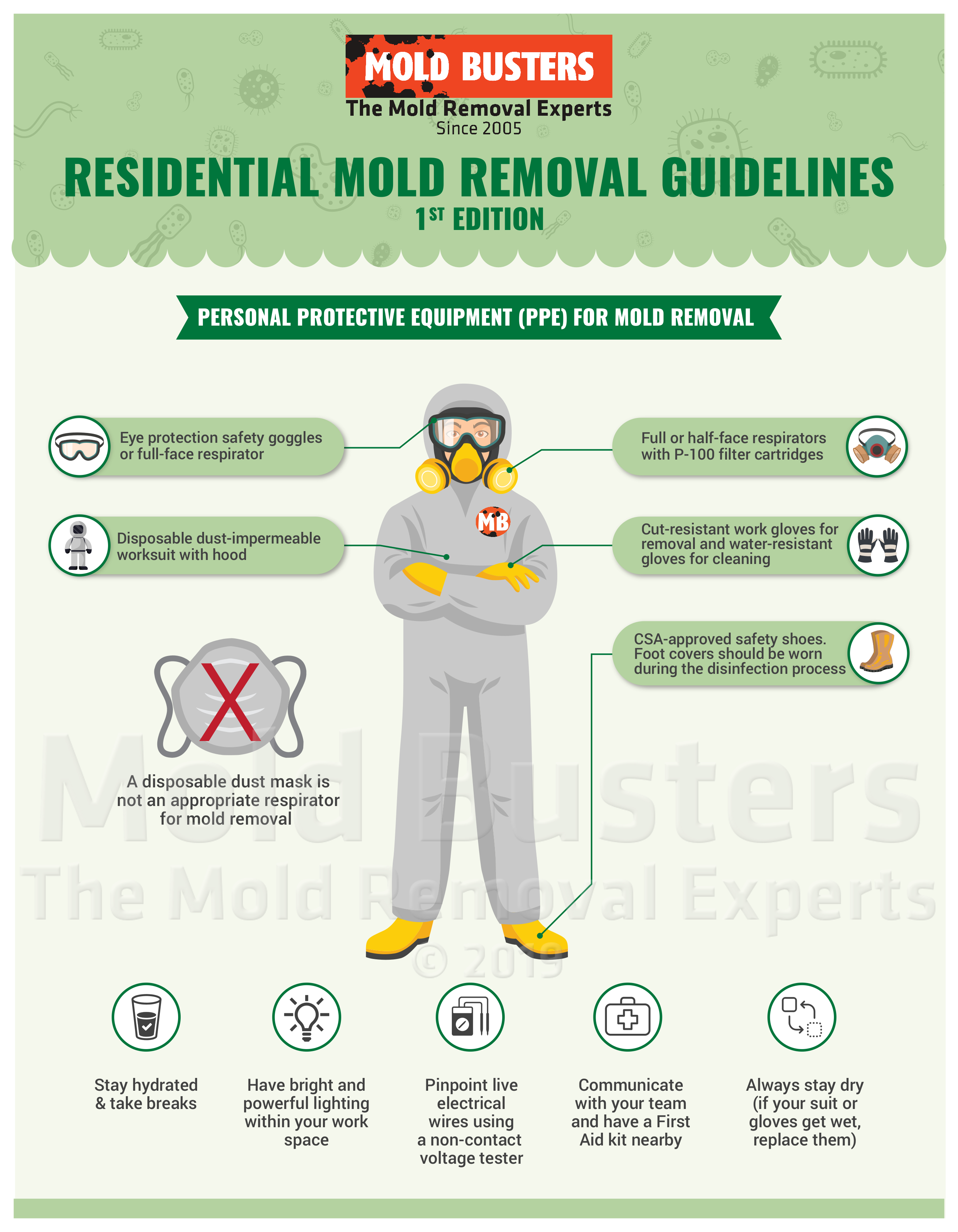 Personal Protective Equipment for Mold Removal